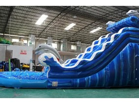 Dolphin Water Slide.